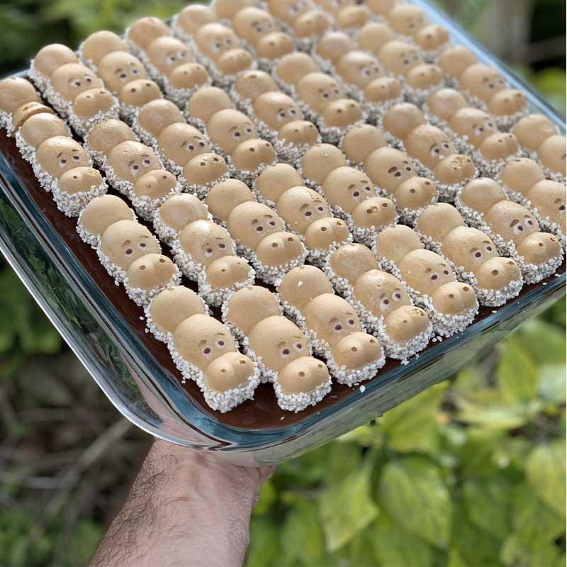 עוגת ביסקוויטים והאפי היפו