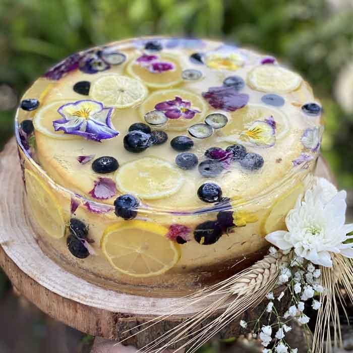 עוגת גבינה דלת שומן
